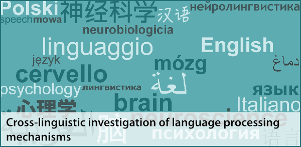 cross-linguistic